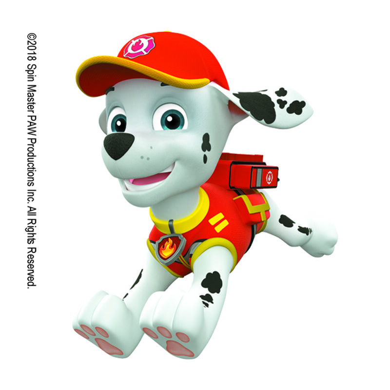 PAW Patrol Marshall in Action Temporary Tattoo image number null