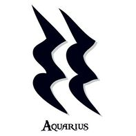 Zodiac: Aquarius Temporary Tattoo