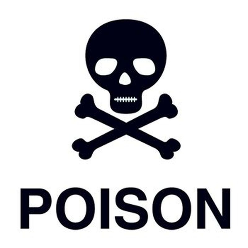Poison Skull Temporary Tattoo image number null