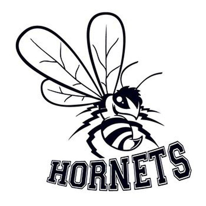 Hornets Sports Temporary Tattoo image number null