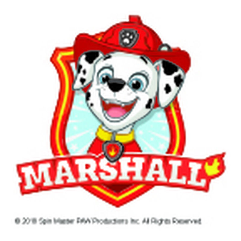 PAW Patrol Marshall Badge Temporary Tattoo image number null