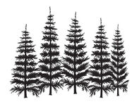Group of Pine Trees Temporary Tattoo