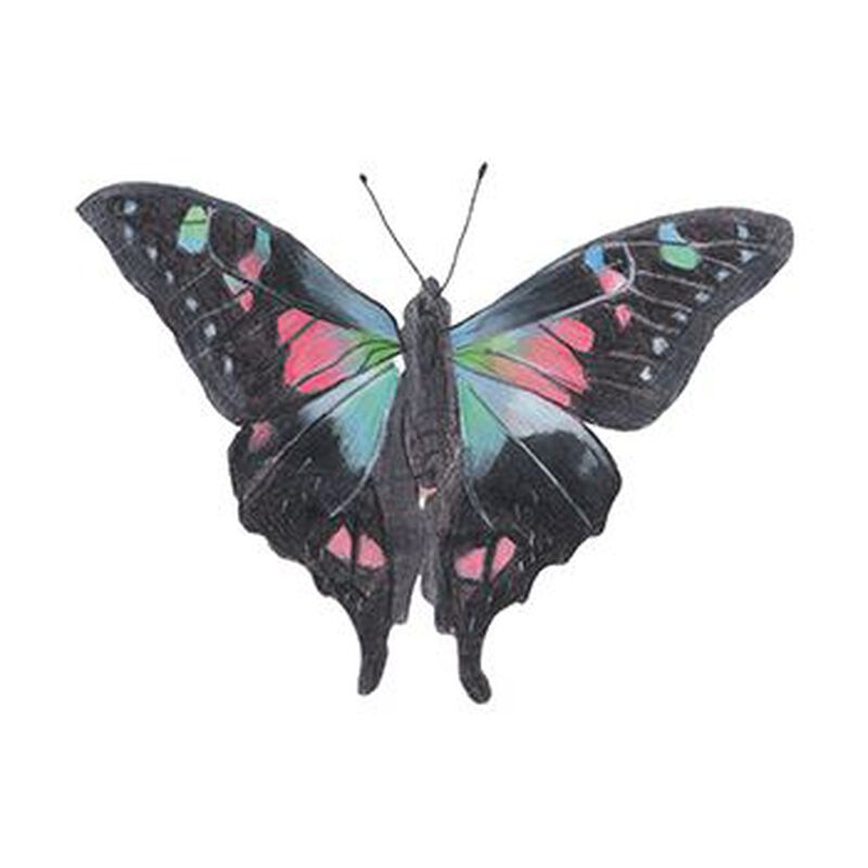 Nightshade Butterfly Temporary Tattoo image number null