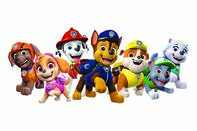 PAW Patrol Team Temporary Tattoo