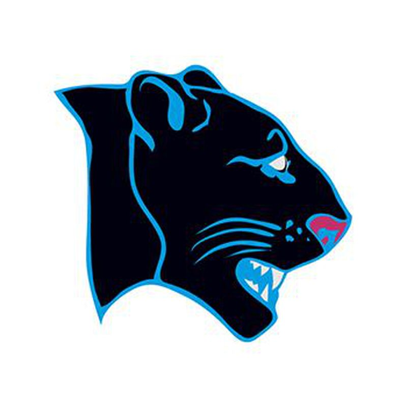 Panther Temporary Tattoo image number null