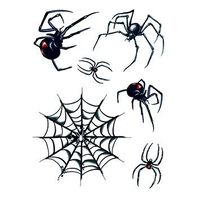 Spider and Web Temporary Tattoos